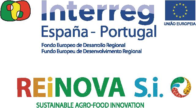 Logo Interreg REiNOVA Si