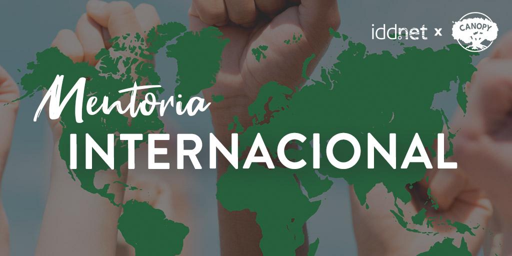 Novo Serviço: Apoio à Internacionalização